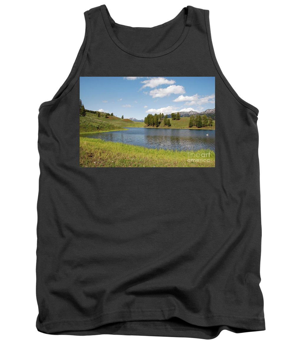 Landscape Tank Top featuring the photograph Beauty Swan Lake by Bruce Chevillat