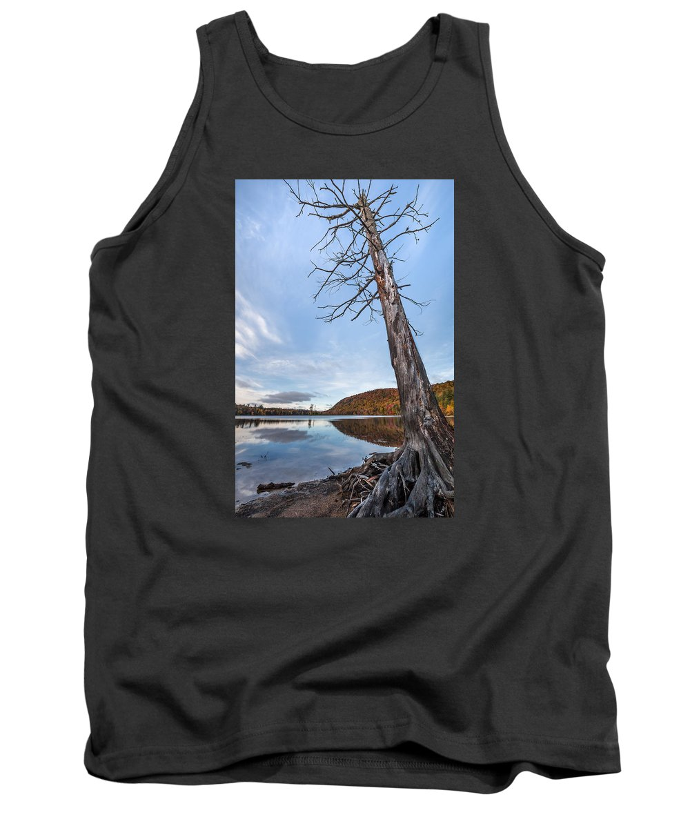 Moss Lake Tank Top featuring the photograph Better Days by Sandy Roe