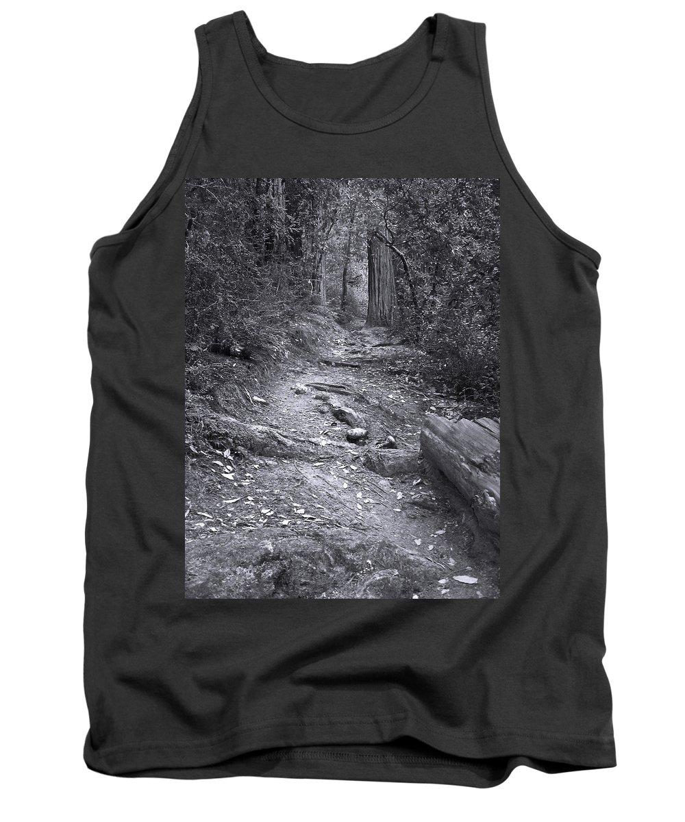 Landscape Tank Top featuring the photograph Big Basin Redwoods Sp 1 by Karen W Meyer