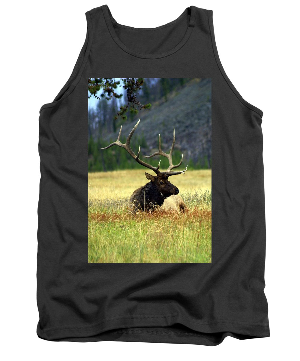 Tank Top featuring the photograph Big Bull 2 by Marty Koch