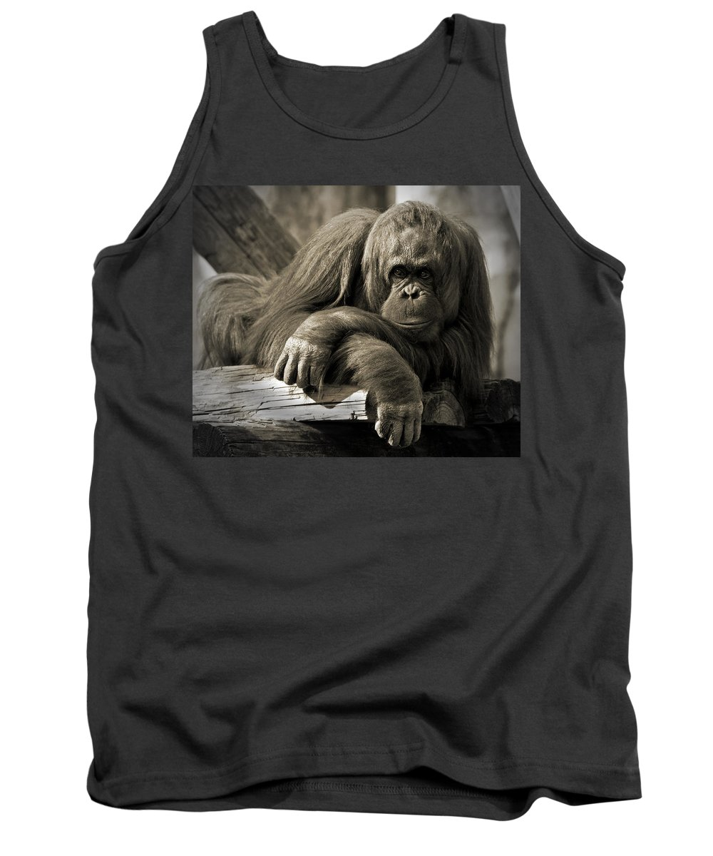 Orangutang Tank Top featuring the photograph Big Hands II by Steven Sparks