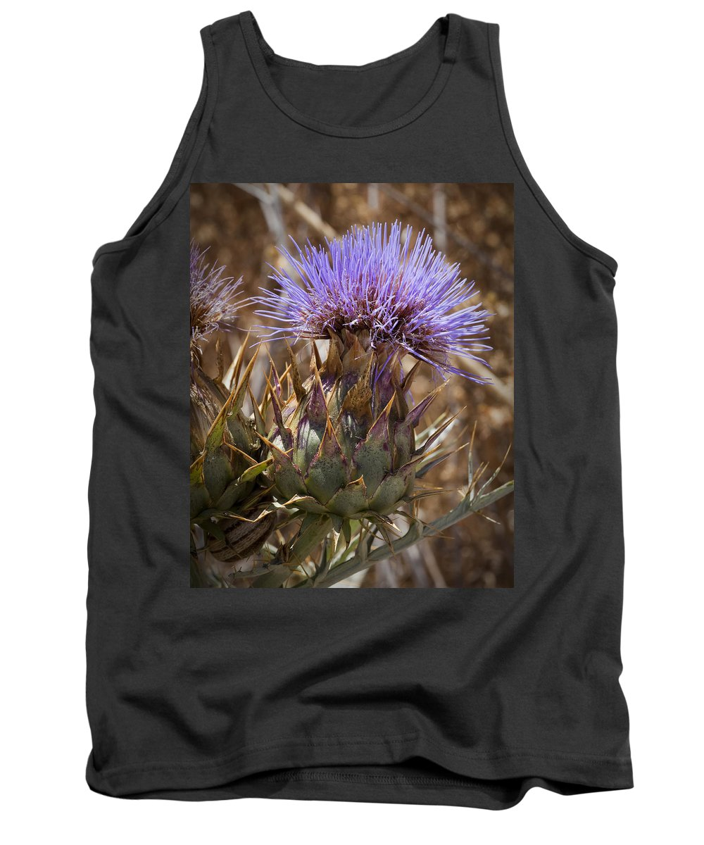 Artichoke Thistles Tank Top featuring the photograph Big Thistle 2 by Kelley King