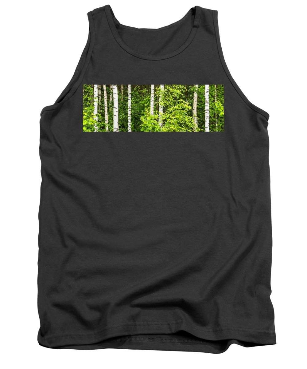 Sweden Tank Top featuring the photograph Birch Tree Panorama by Stefan Mazzola