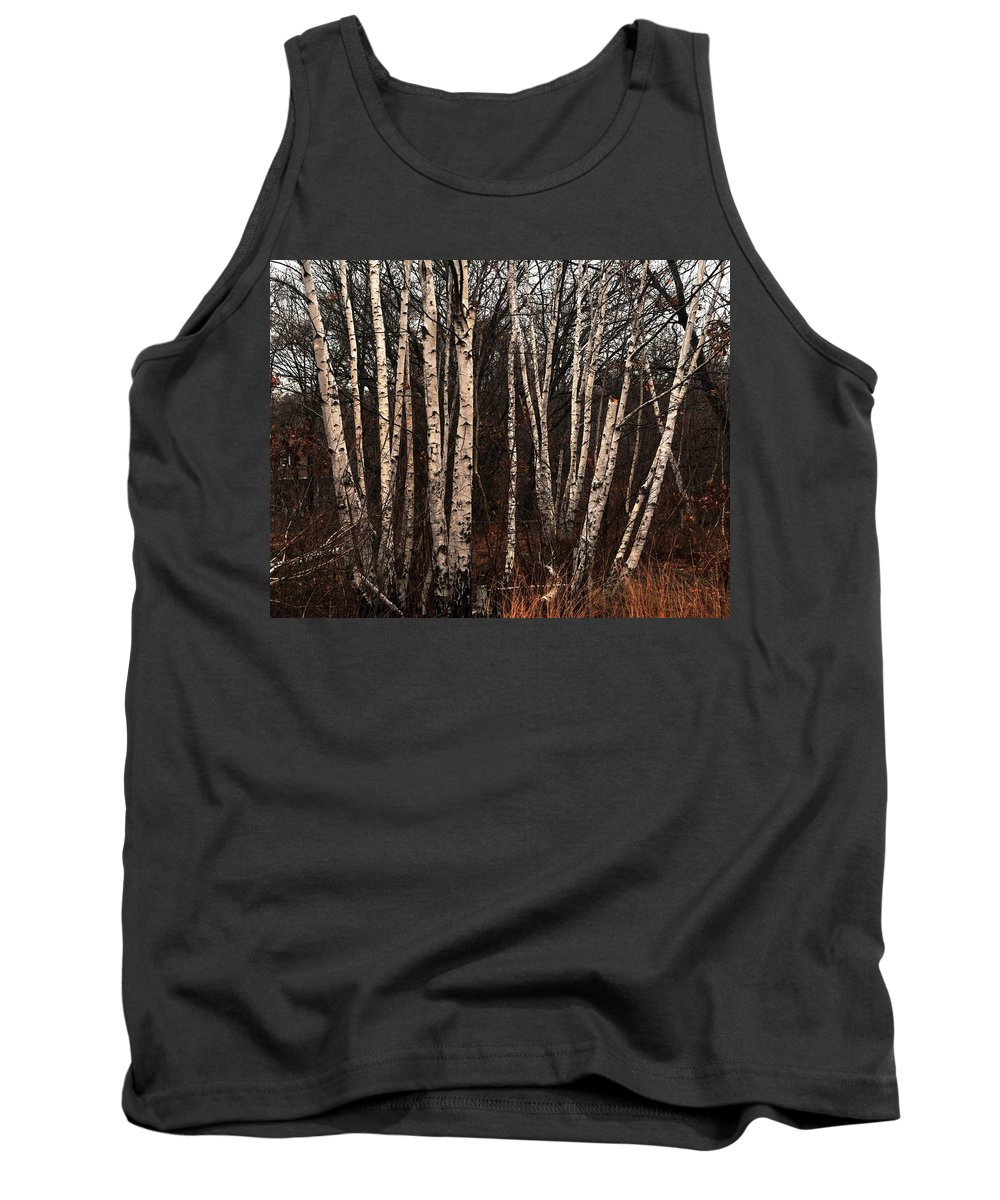 Birches In The Rain Rock Island Houghs Neck Quincy Ma Tank Top featuring the photograph Birches In The Rain by Bill Driscoll