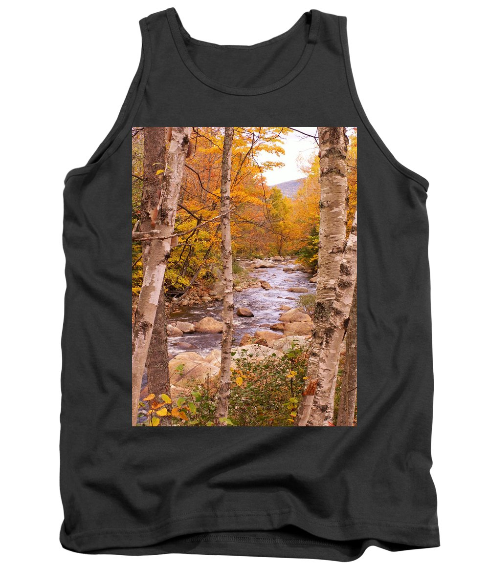 Landscape Tank Top featuring the photograph Birches On The Kancamagus Highway by Nancy Griswold