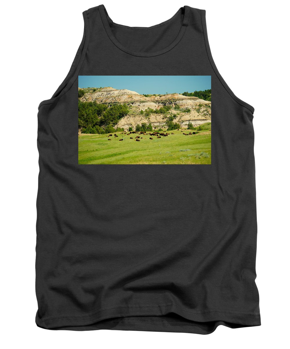 Animal Tank Top featuring the photograph Bison Herd by Beth Collins