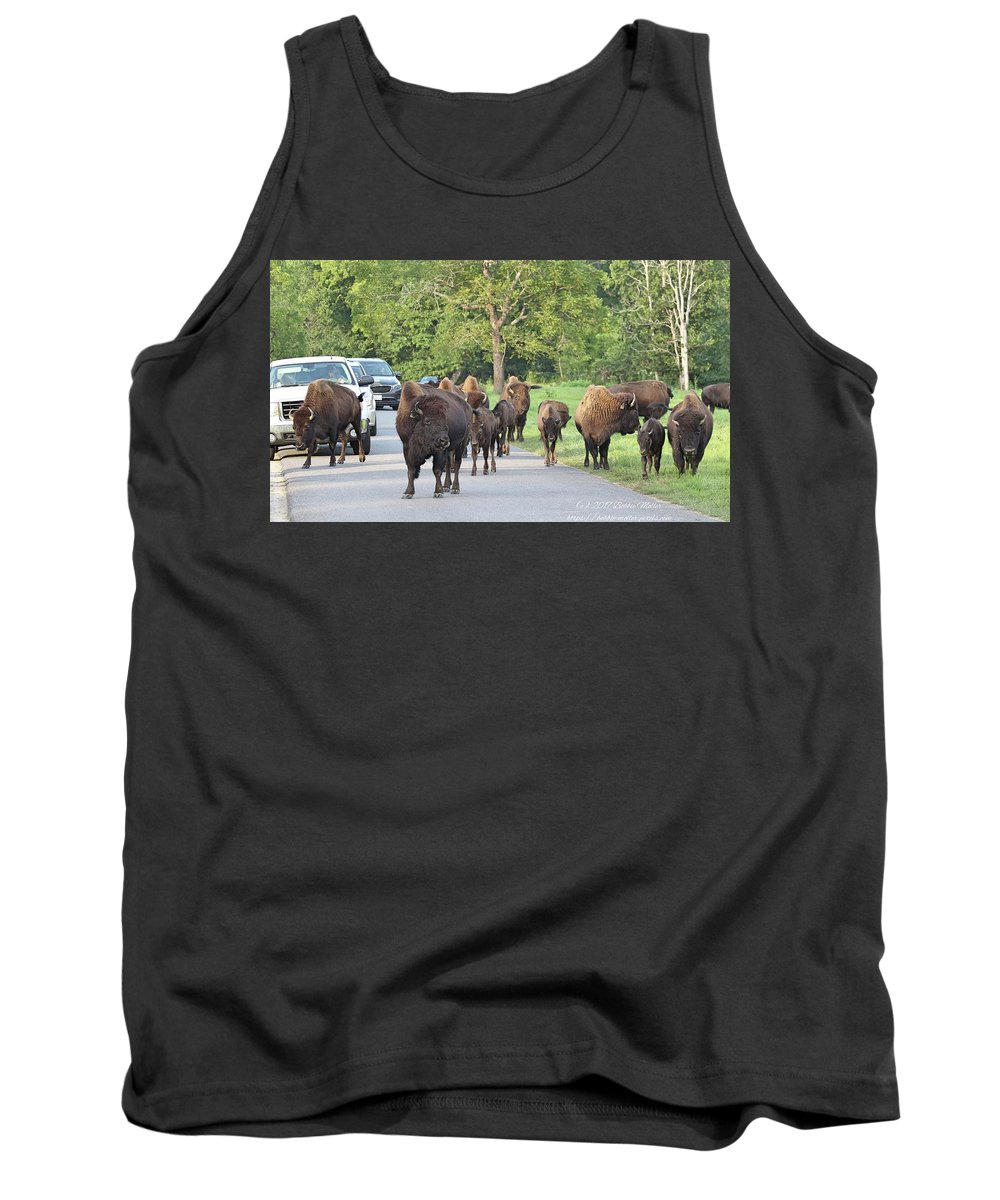 Bison Tank Top featuring the photograph Bison Traffic Jam by Bobbie Moller
