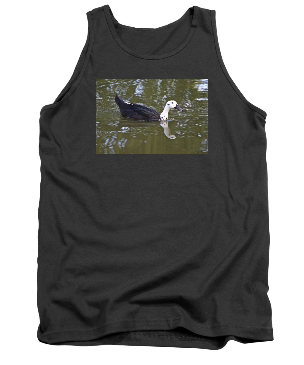 Duck Tank Top featuring the photograph Black And White Duck Reflections by Venetia Featherstone-Witty