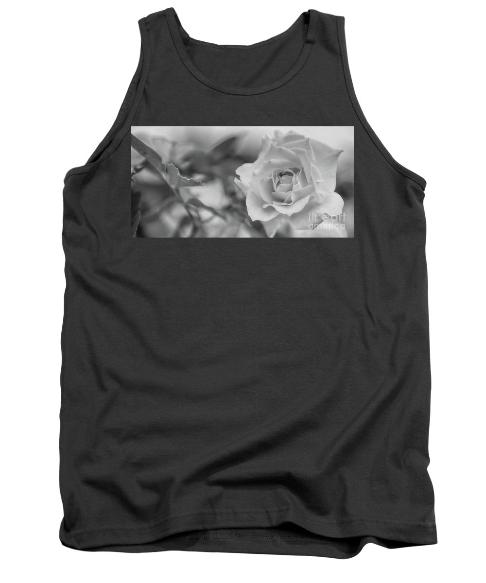 Black And White Tank Top featuring the photograph Black And White Rose by Olga Hamilton