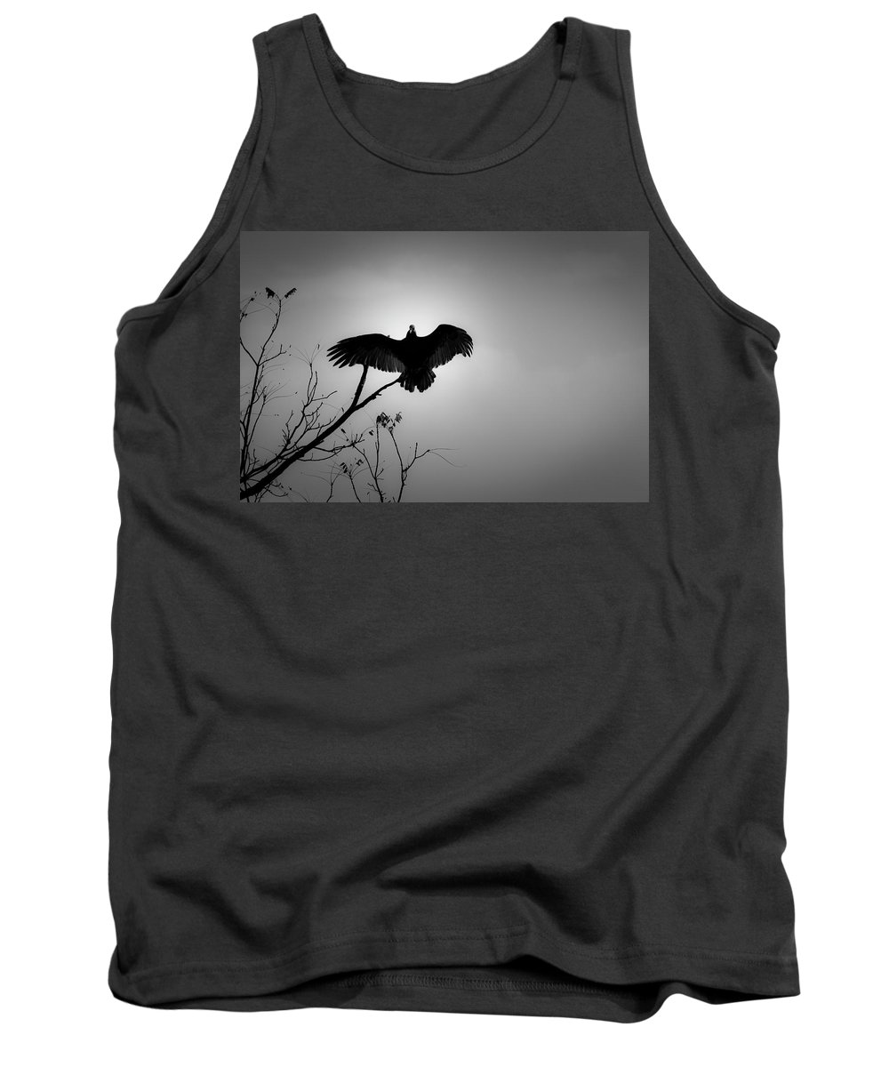 Black Tank Top featuring the photograph Black Buzzard 5 by Teresa Mucha