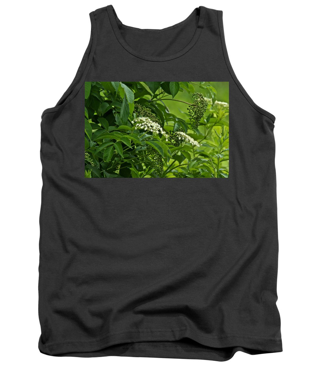 Elderberry Tank Top featuring the photograph Black Elderberry - Sambucus Nigra_0261black Elderberry - Sambucus Nigra by Mother Nature
