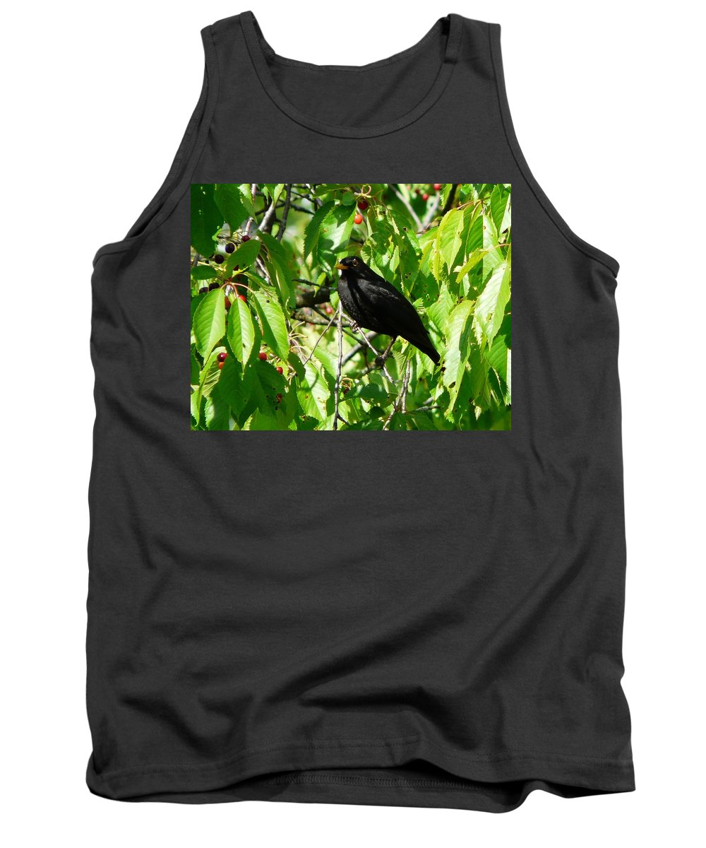 Bird Tank Top featuring the photograph Blackbird In The Cherry Tree by Valerie Ornstein