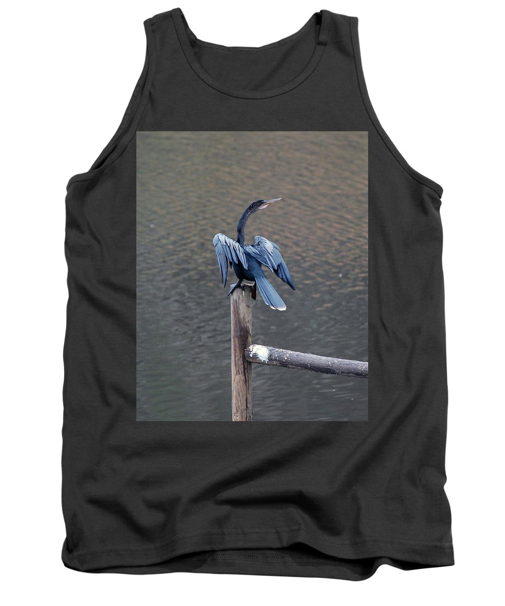 Bird Tank Top featuring the photograph Blue Darter by Robert Meanor