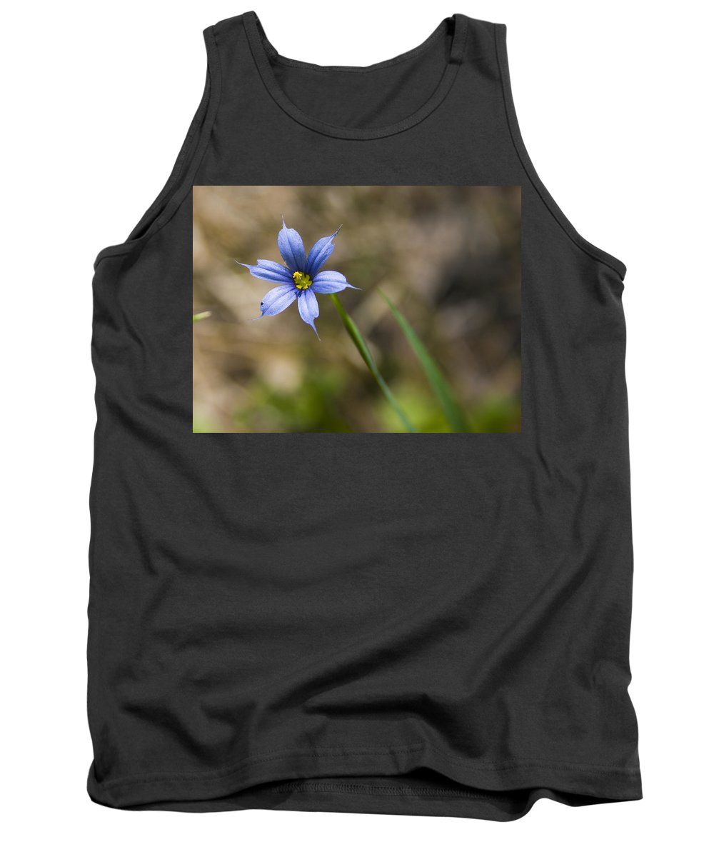 Flower Blue Grass Green Small Little Bright Color Colorful Yellow Flora Nature Tank Top featuring the photograph Blue-eyed Grass II by Andrei Shliakhau