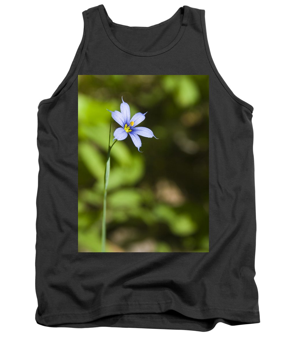 Blue Eye Grass Flower Nature Yellow Green Delicate Small Little Tank Top featuring the photograph Blue-eyed Grass IIi by Andrei Shliakhau