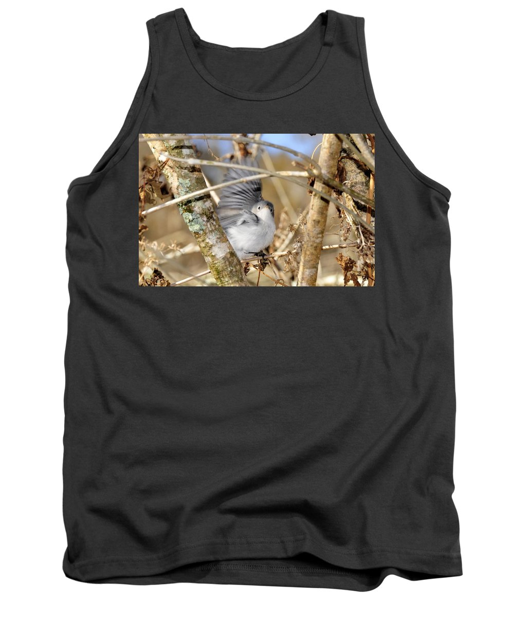 Warbler Tank Top featuring the photograph Blue Gray Gnatcatcher by David Lee Thompson