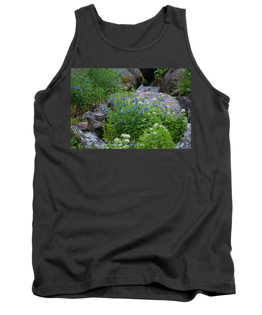 Wildflowers Tank Top featuring the photograph Bluebells by Heather Coen