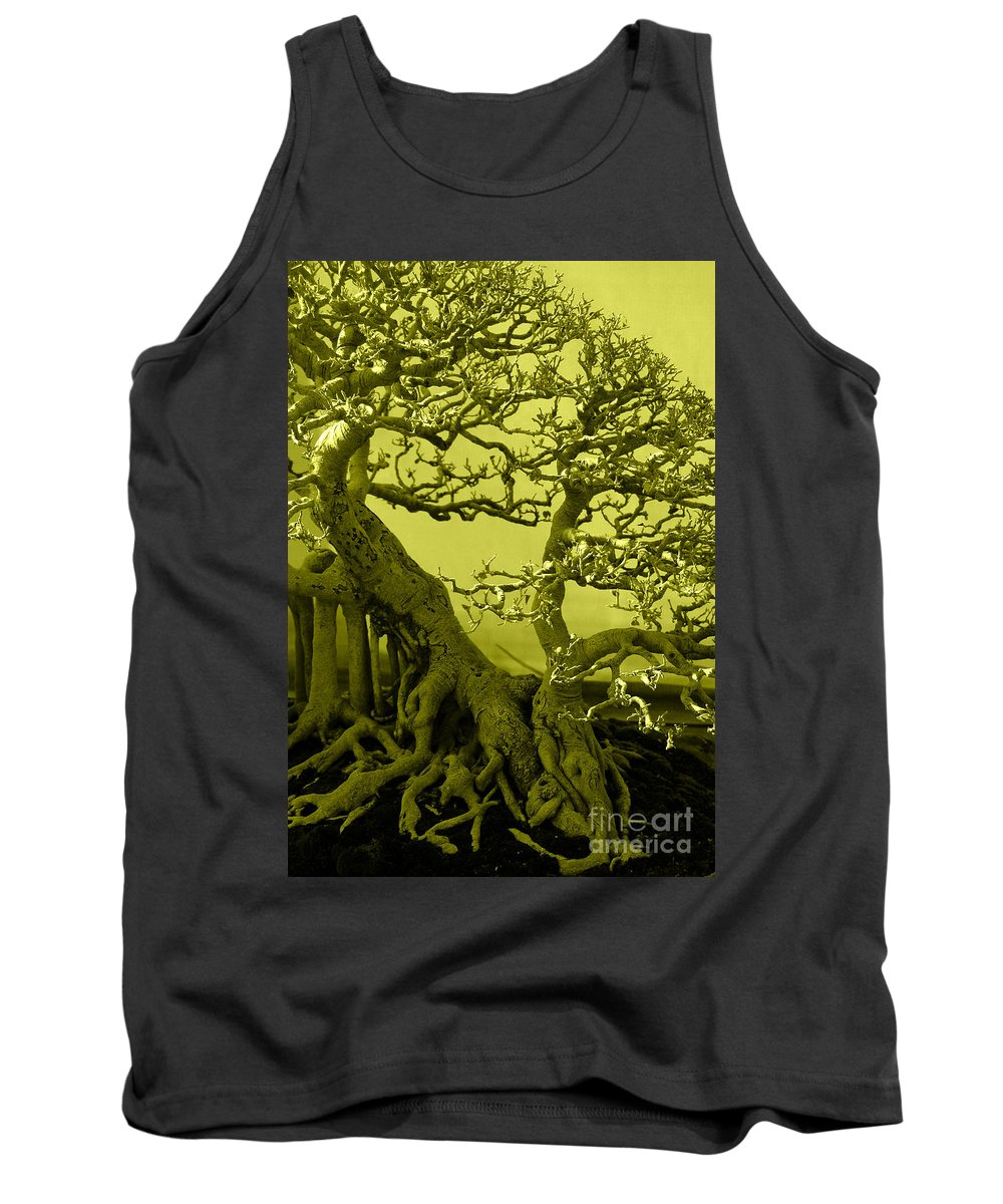 Botanical Tank Top featuring the photograph Bonsai by Charuhas Images