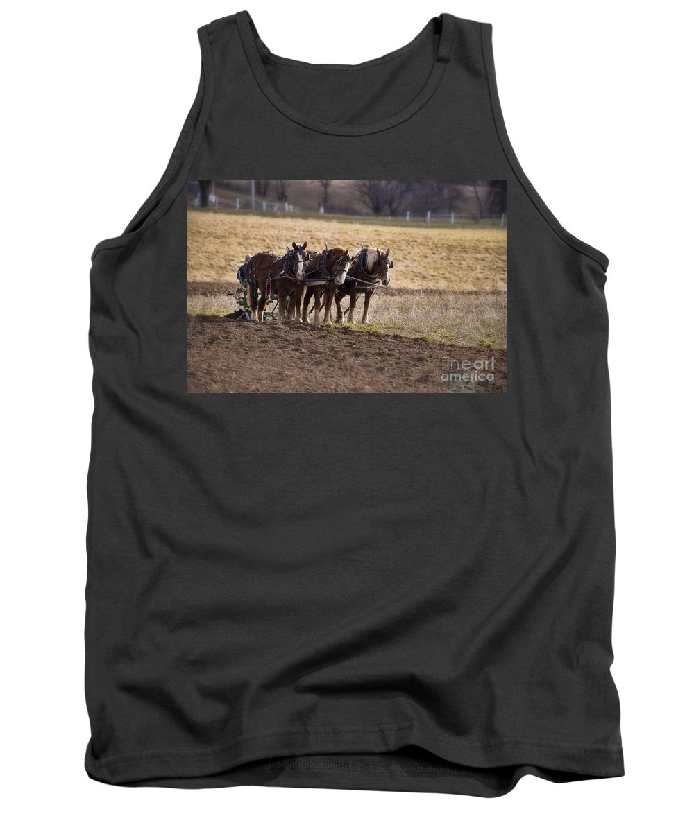 Amish Tank Top featuring the photograph Boy Waiting With Horses by David Arment