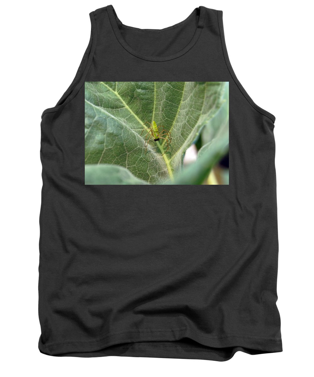 Spider Tank Top featuring the photograph Breakfast by Robert Meanor
