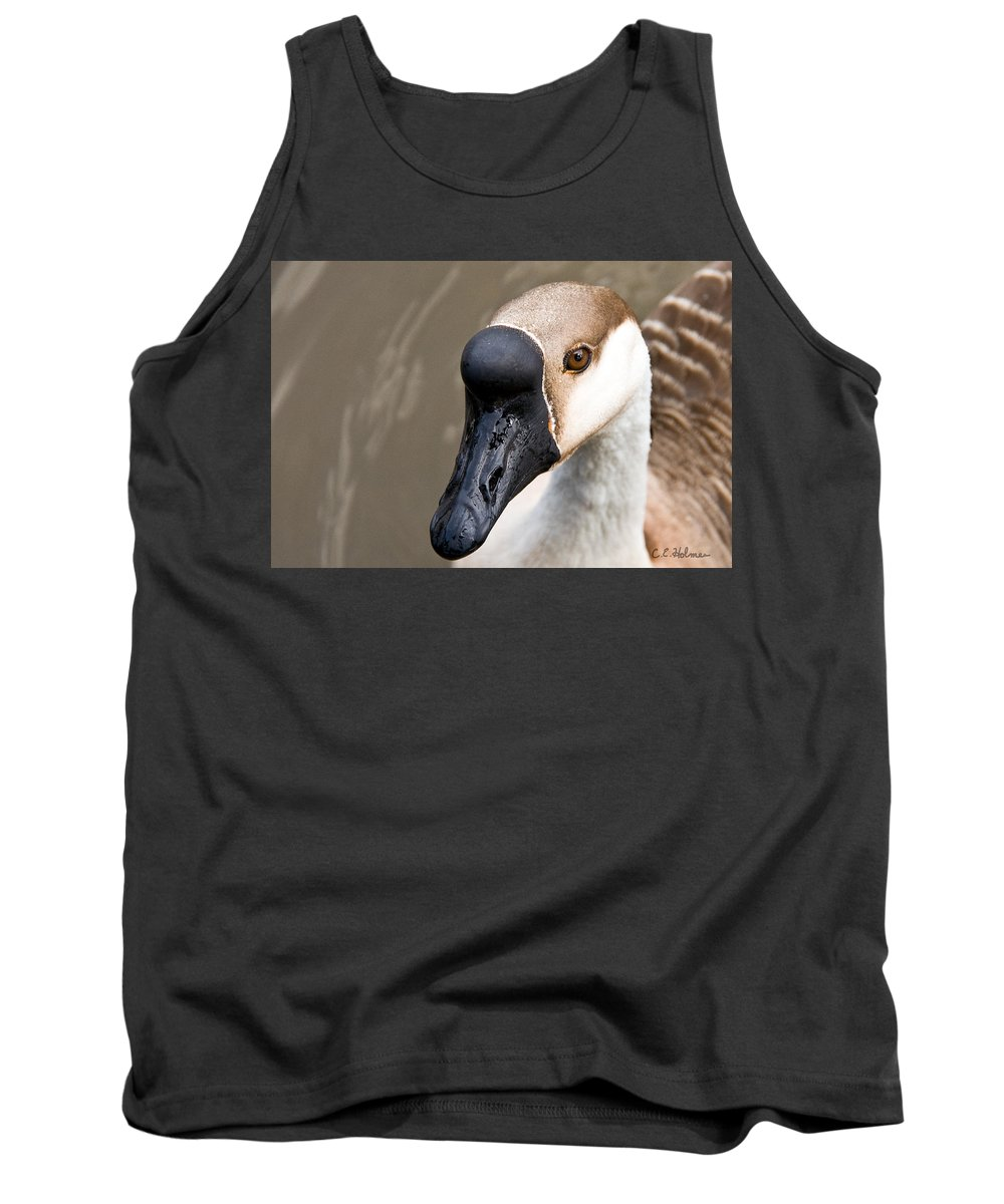 Chinese Brown Goose Tank Top featuring the photograph Brown Eye by Christopher Holmes
