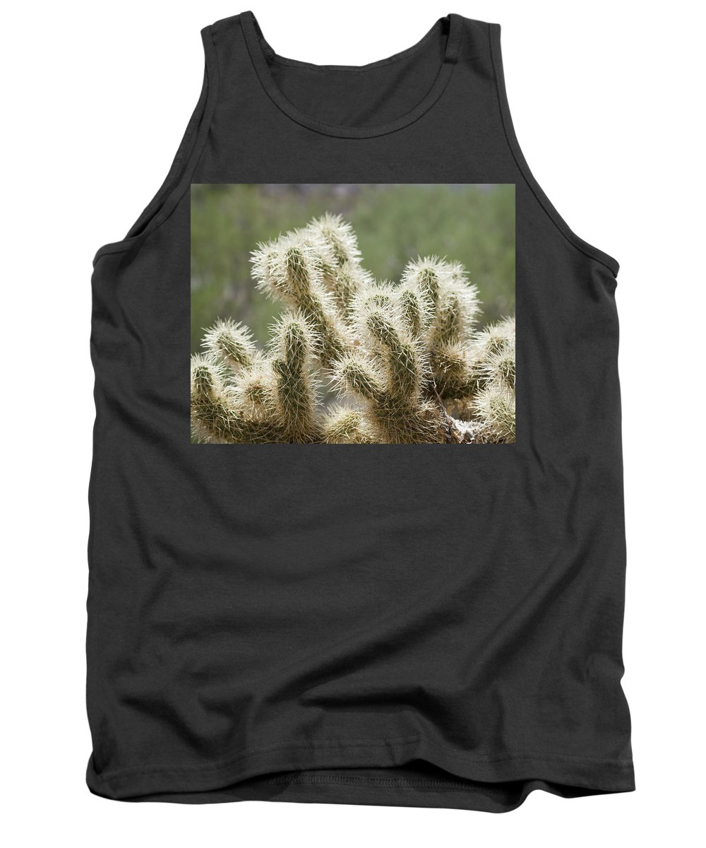 Cholla Tank Top featuring the photograph Buckhorn Cholla by Kelley King