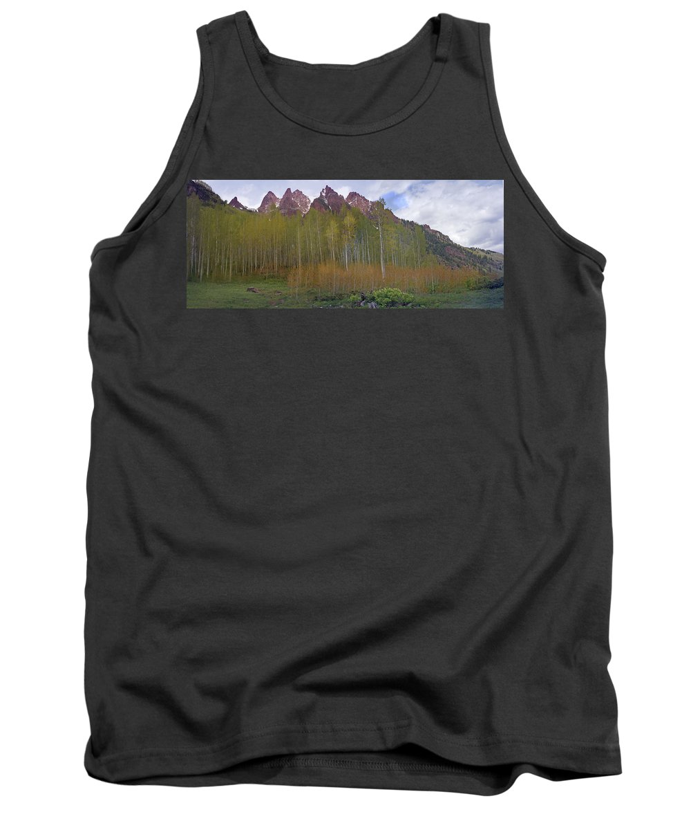 Mountain Tank Top featuring the photograph Buckskin Mtn And Friends by Heather Coen