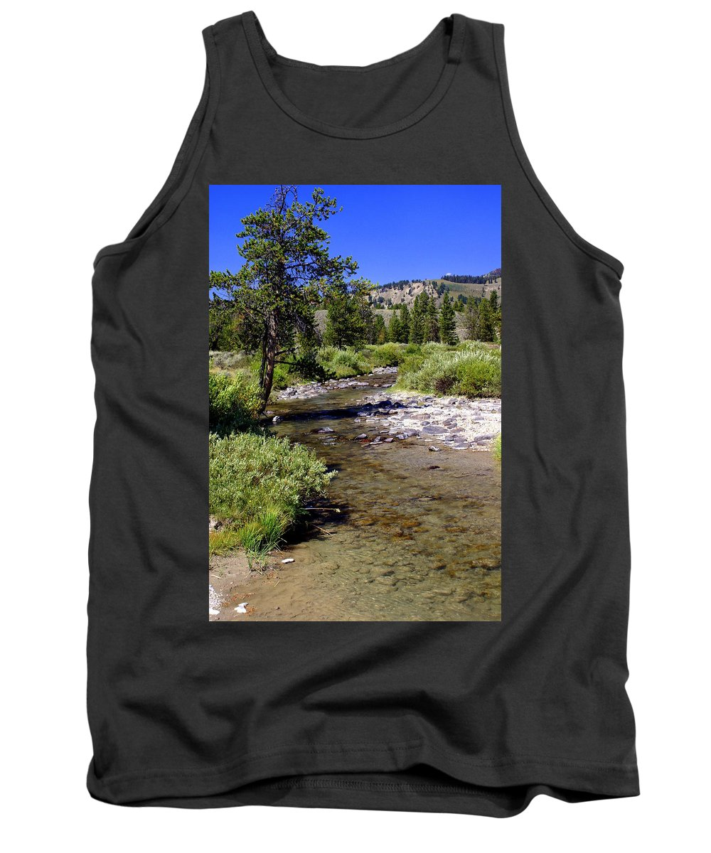 Montana Tank Top featuring the photograph Buffalo Fork by Marty Koch