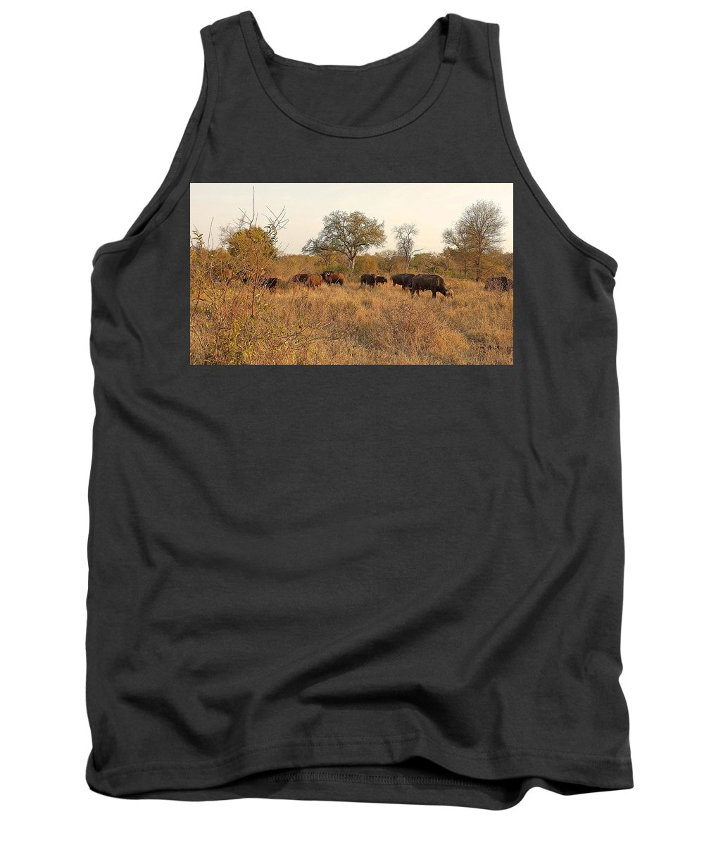 Buffalo Tank Top featuring the photograph Buffalo In The Timbavati by Lisa Byrne