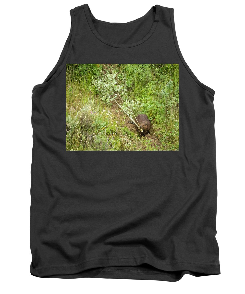 Tank Top featuring the photograph Busy by Dan Kinghorn