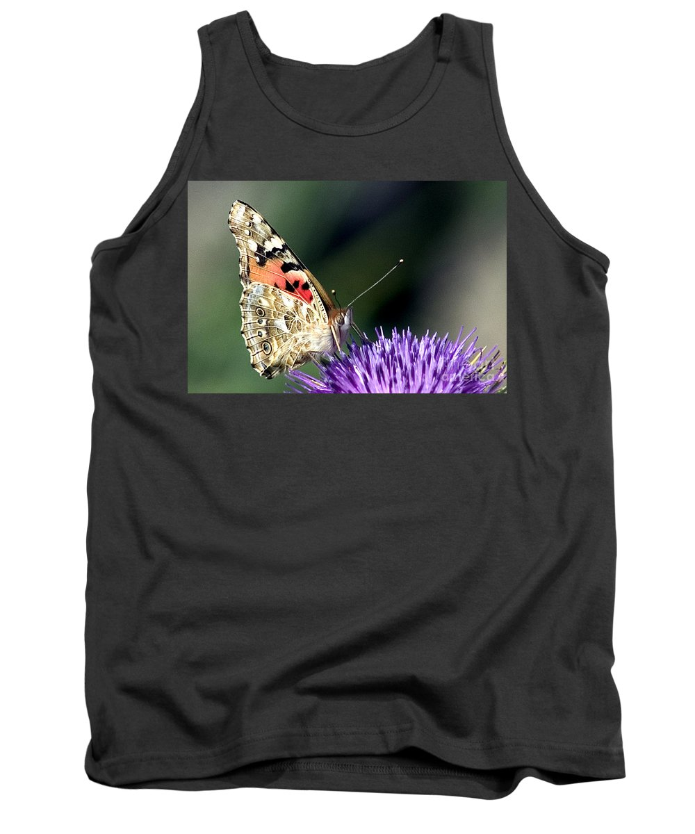 Butterfly Tank Top featuring the photograph butterfly on a Silybum marianum I by Nahum Budin