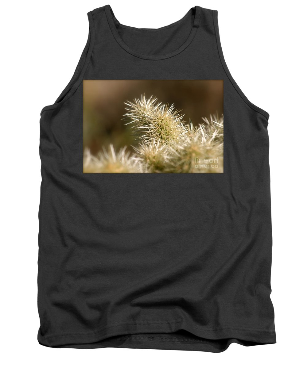 Cactus Tank Top featuring the photograph Cacti by Nadine Rippelmeyer