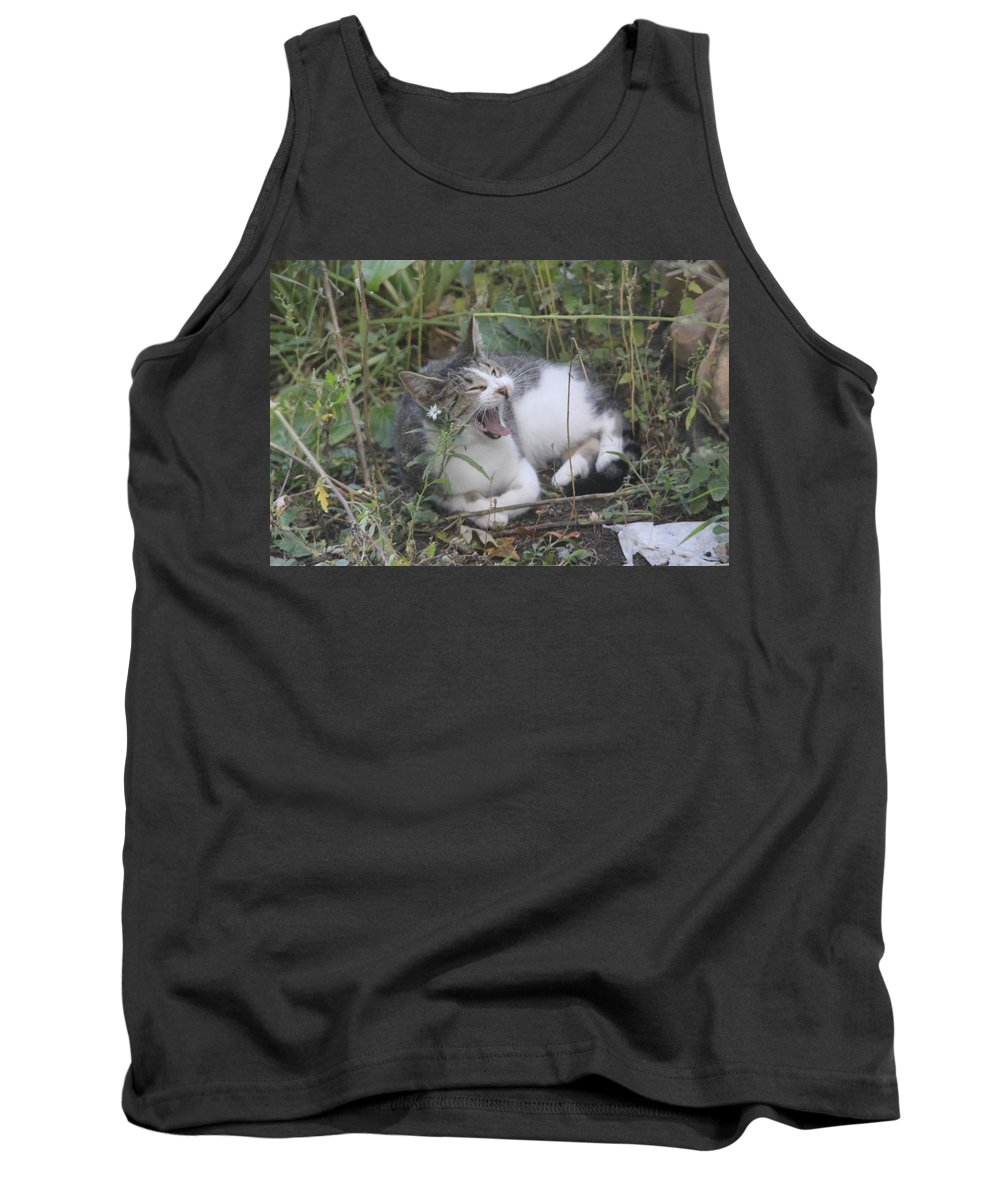 Cat Tank Top featuring the photograph Cat Yawning In The Garden by Cliff Ball