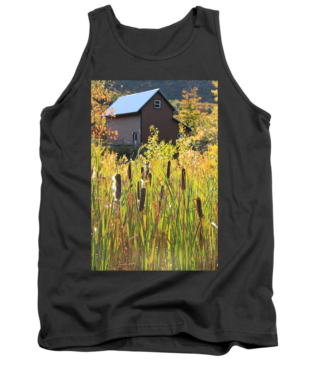 Cattails Tank Top featuring the photograph Cattails And Barn by Roupen Baker