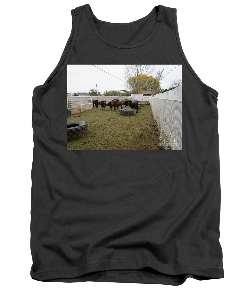 Cattle Tank Top featuring the photograph Cattle by Frederick Holiday