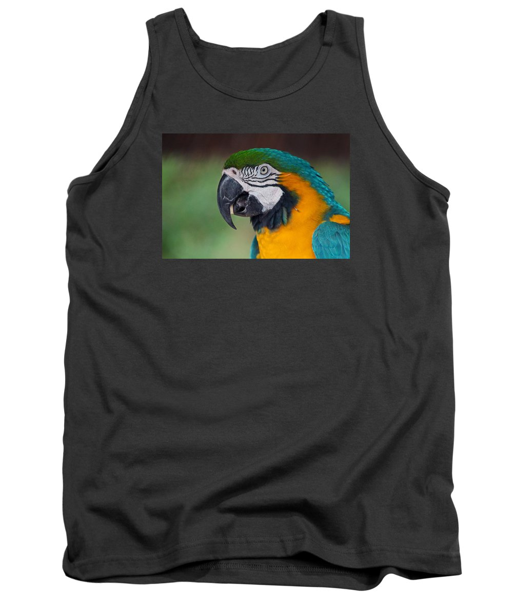 Blue Tank Top featuring the photograph Chester II by Michiale Schneider
