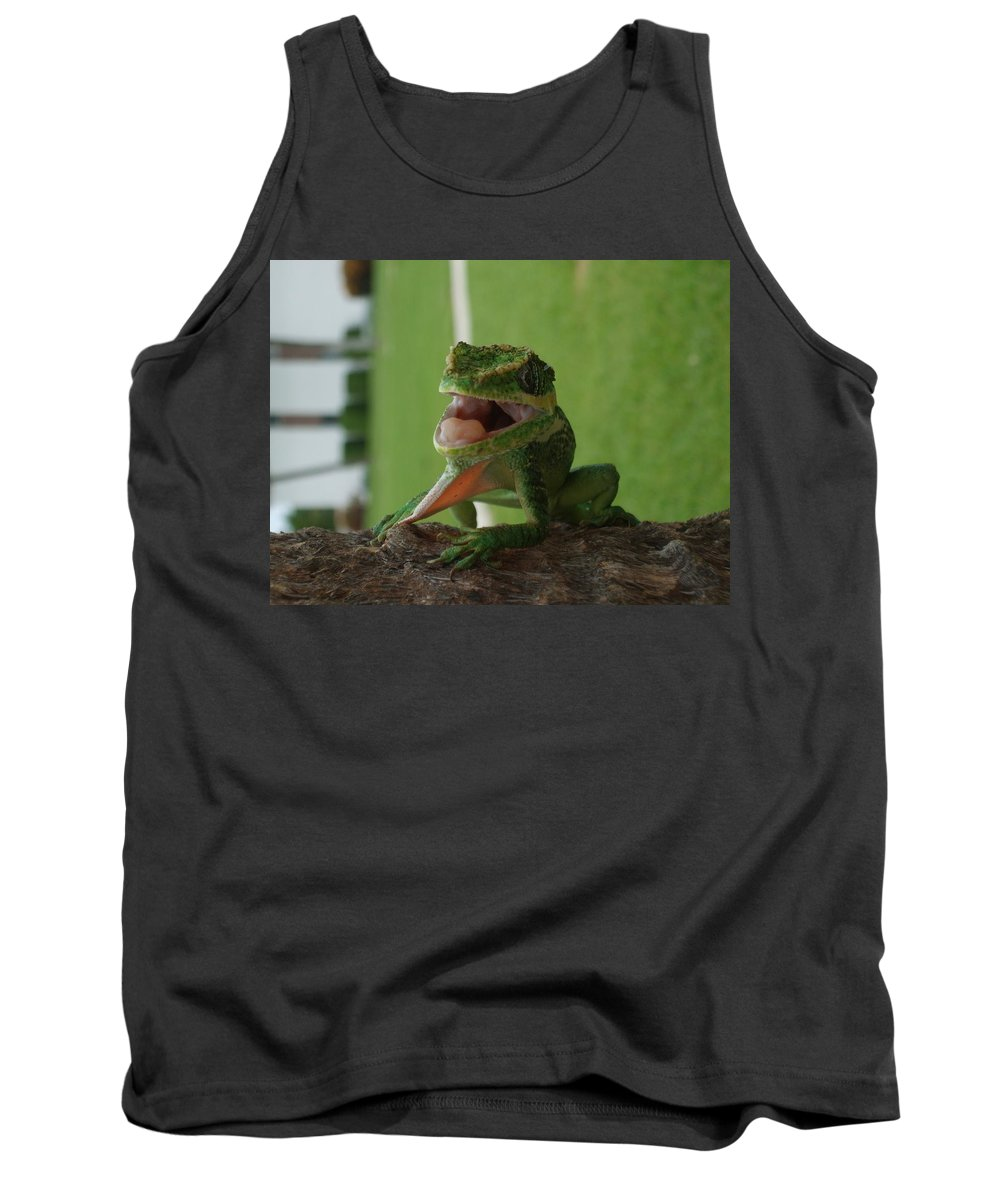 Iguana Tank Top featuring the photograph Chilling On Wood by Rob Hans