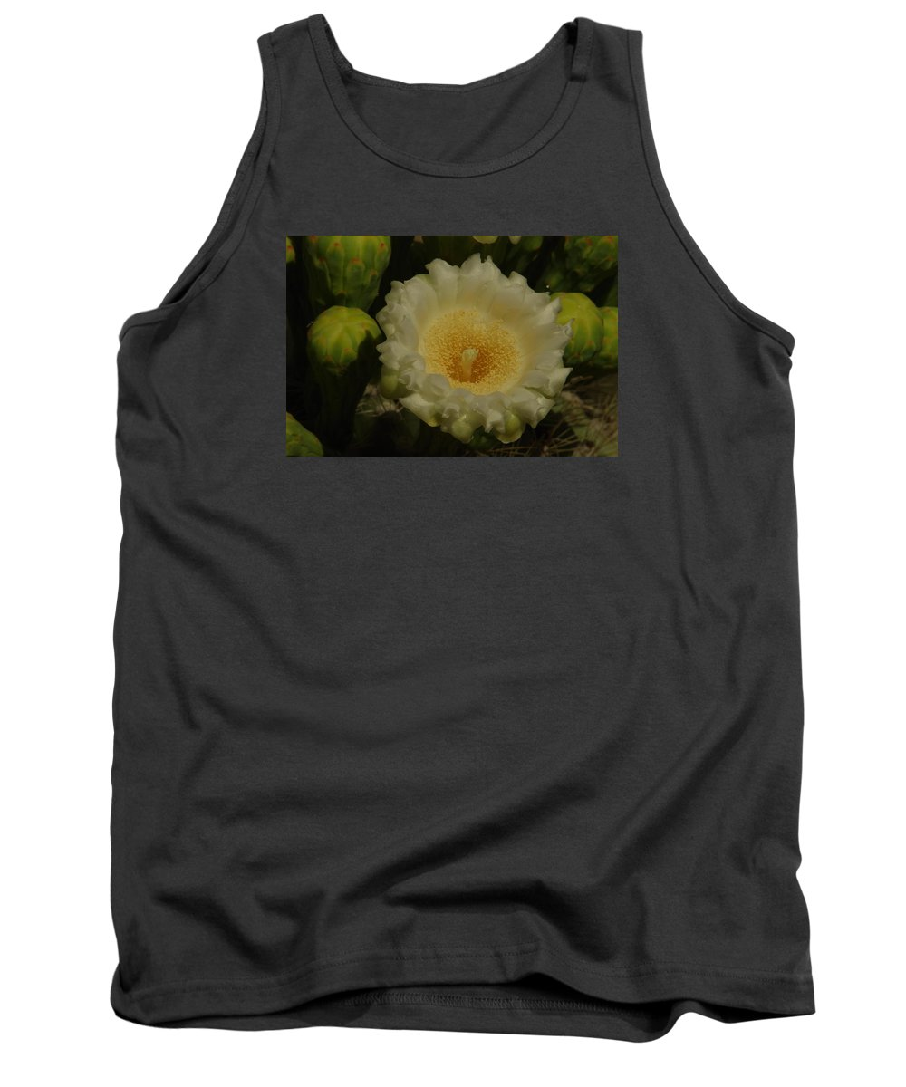 Bloom Tank Top featuring the photograph Close Up Of A Cactus Bloom. by Jeff Swan
