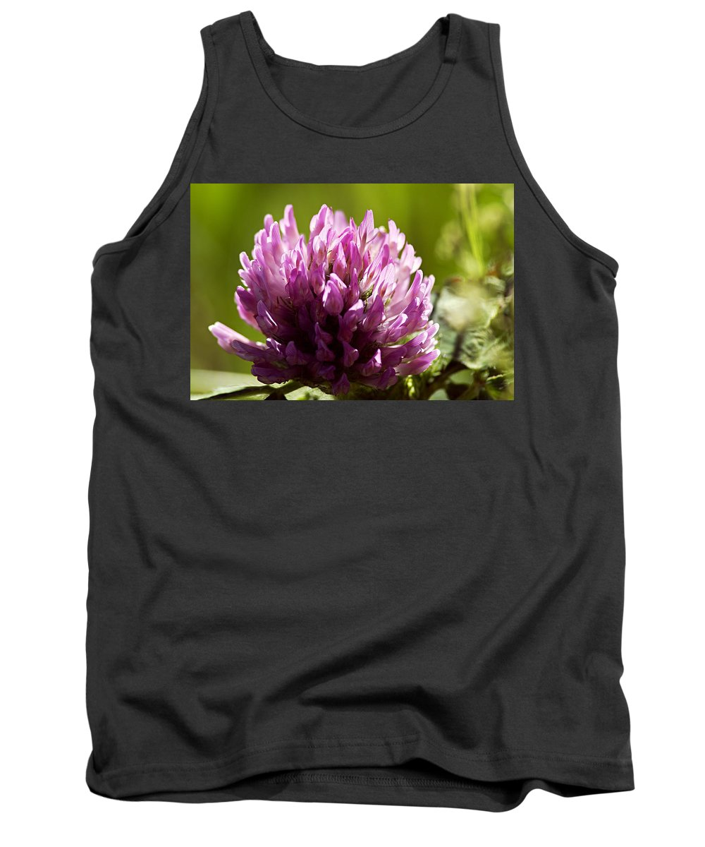 Clover Tank Top featuring the photograph Clover Blossom by Larry Ricker