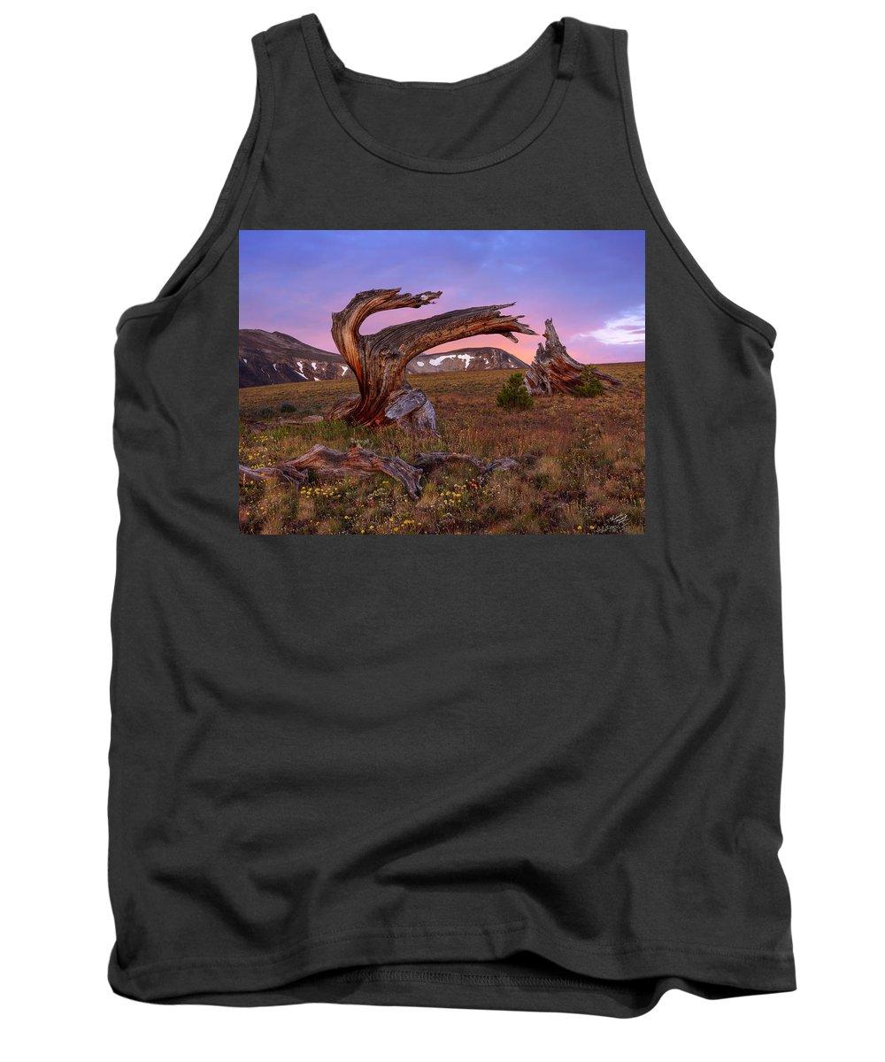 Idaho Scenics Tank Top featuring the photograph Coloful High Mountain Splendor by Leland D Howard