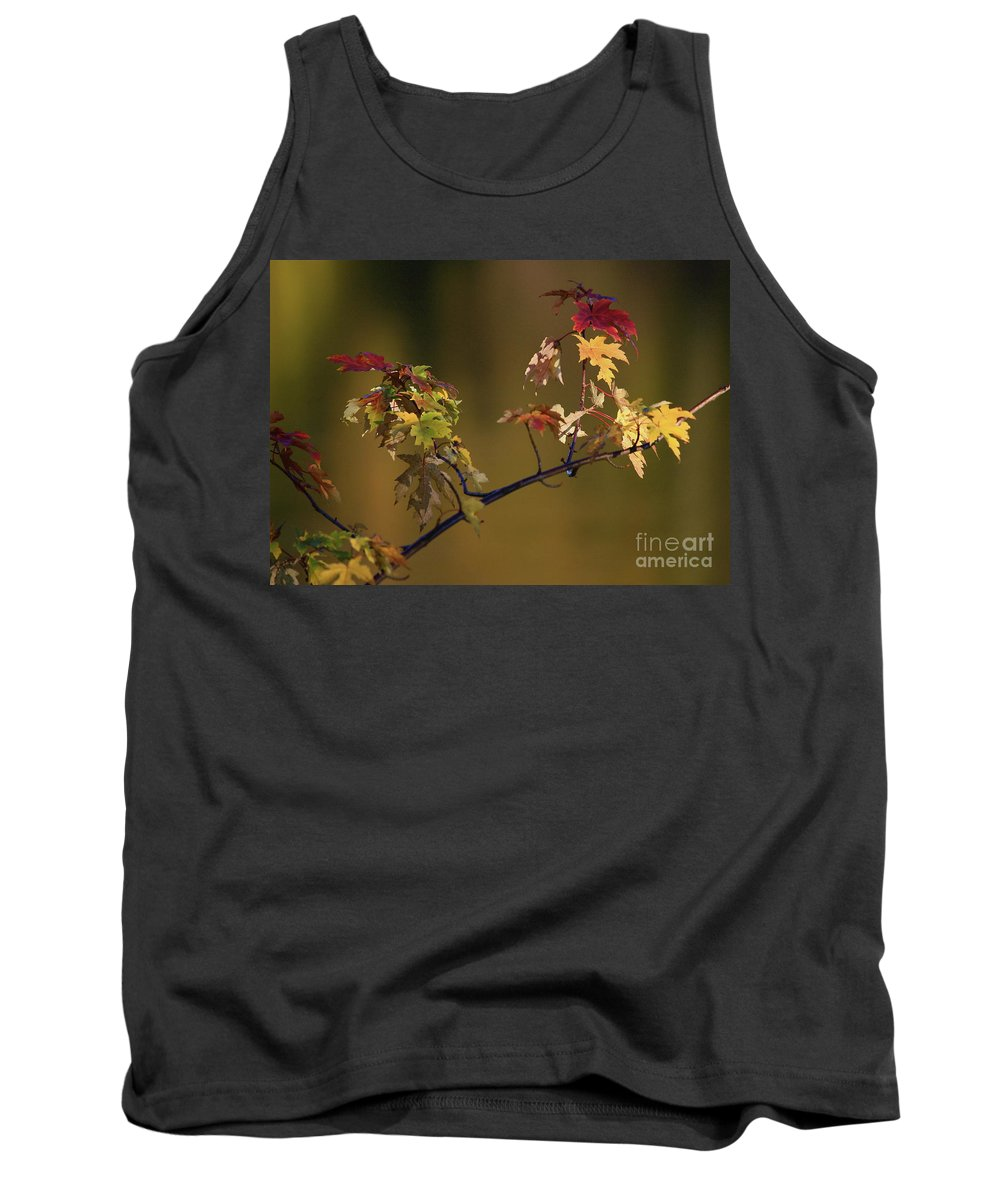 Fall Tank Top featuring the photograph Color On A Stick by Robert Pearson