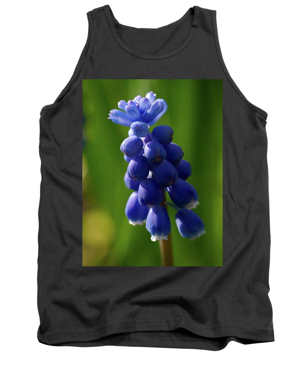 Lehtokukka Tank Top featuring the photograph Compact Grape-hyacinth by Jouko Lehto