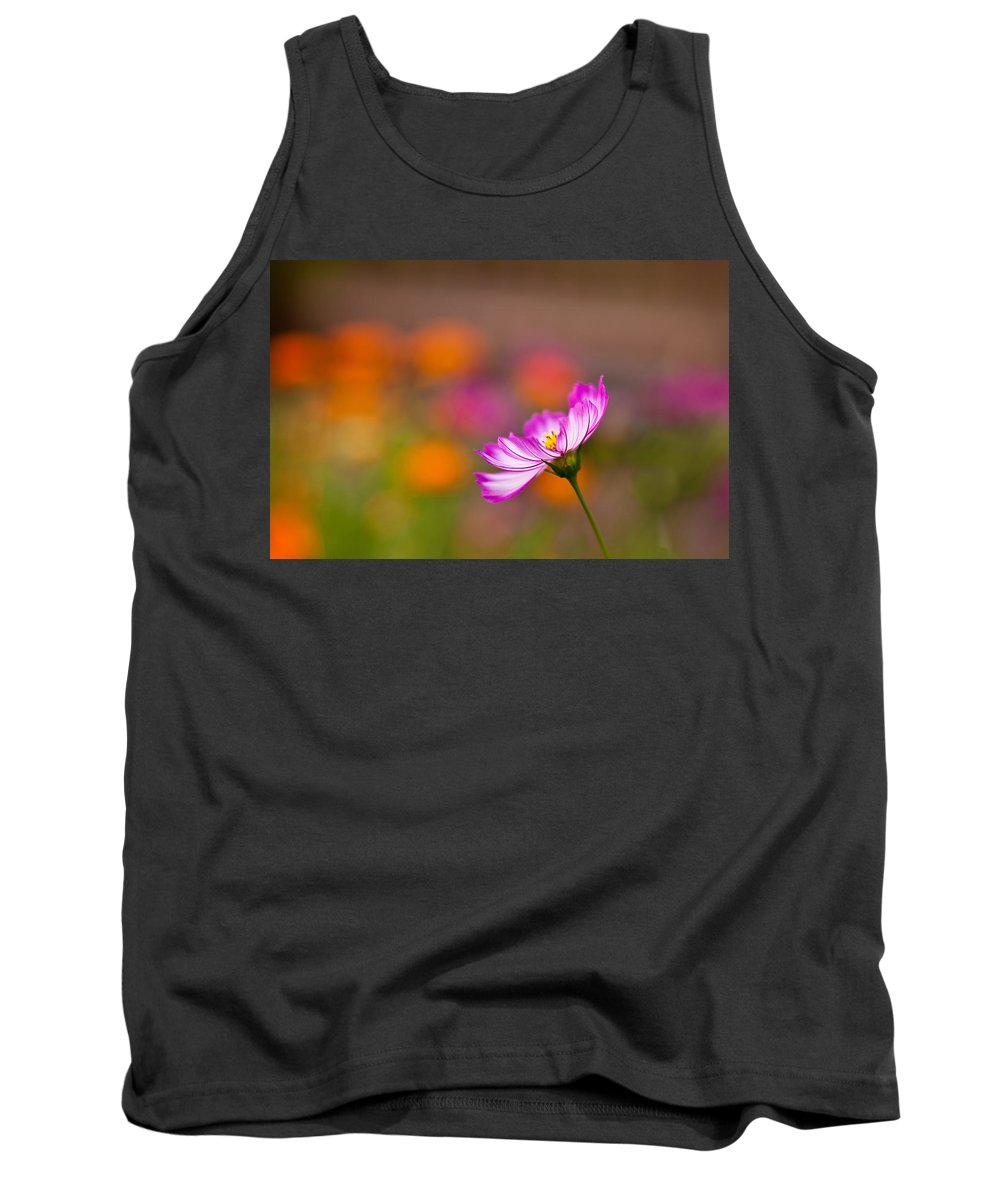 Cosmo Tank Top featuring the photograph Cosmo Solo by Mike Reid