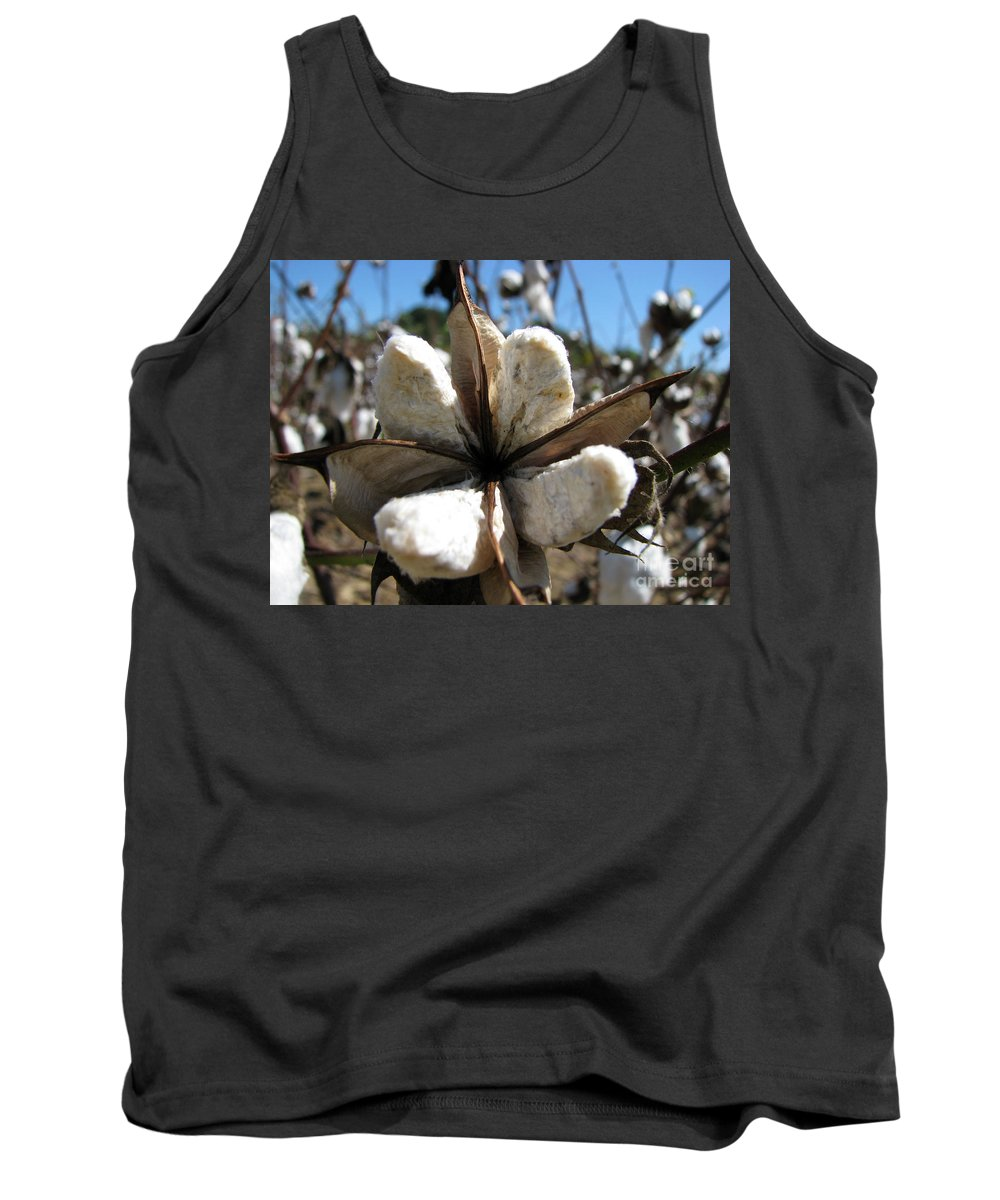 Cotton Tank Top featuring the photograph Cotton by Amanda Barcon