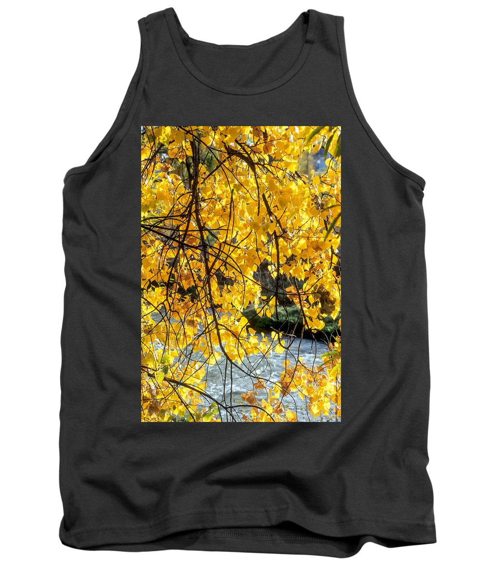 Cottonwood Tank Top featuring the photograph Cottonwood Tree Along The River by John Brink