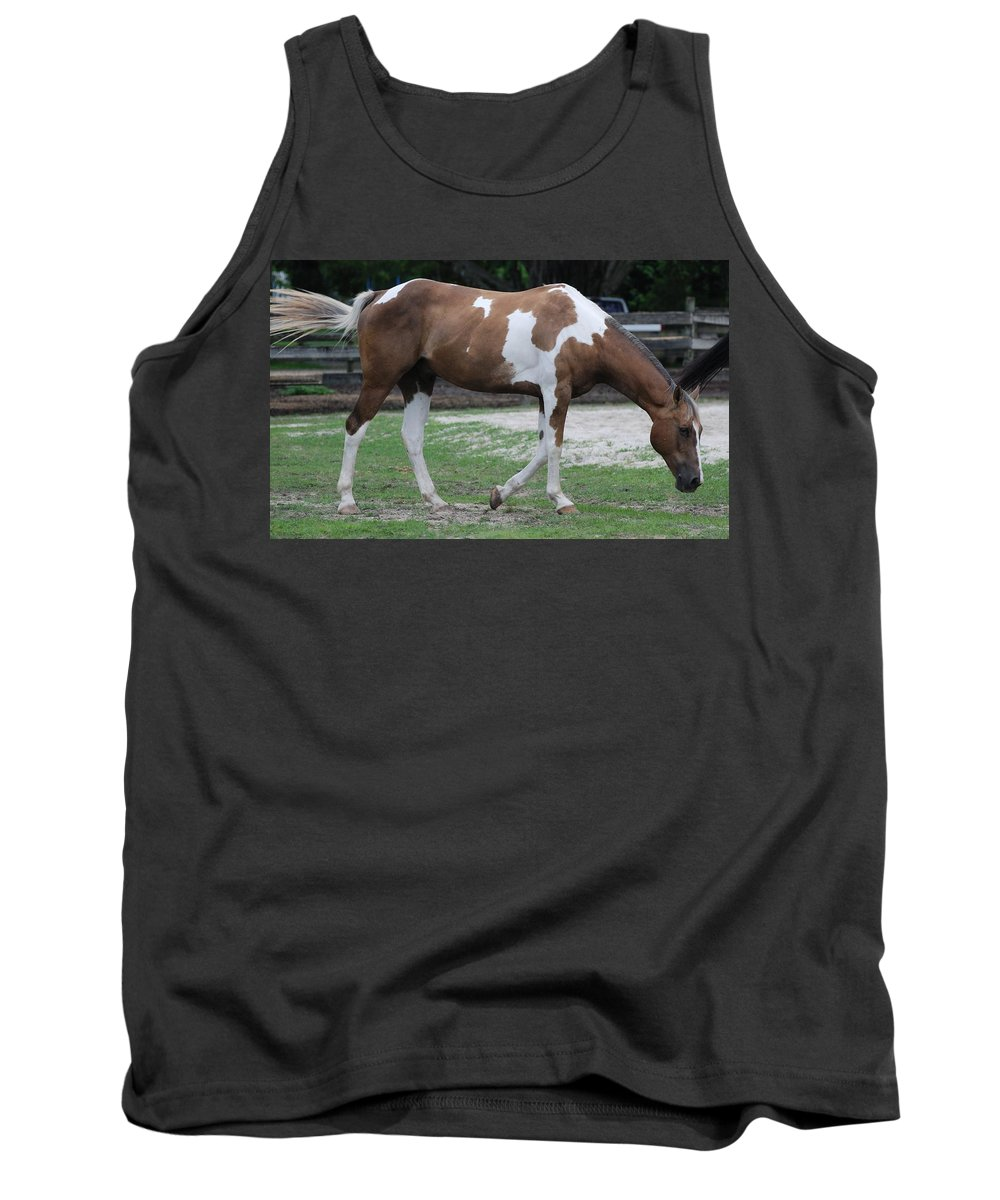 Horse Tank Top featuring the photograph Cow Spotted Horse by Rob Hans