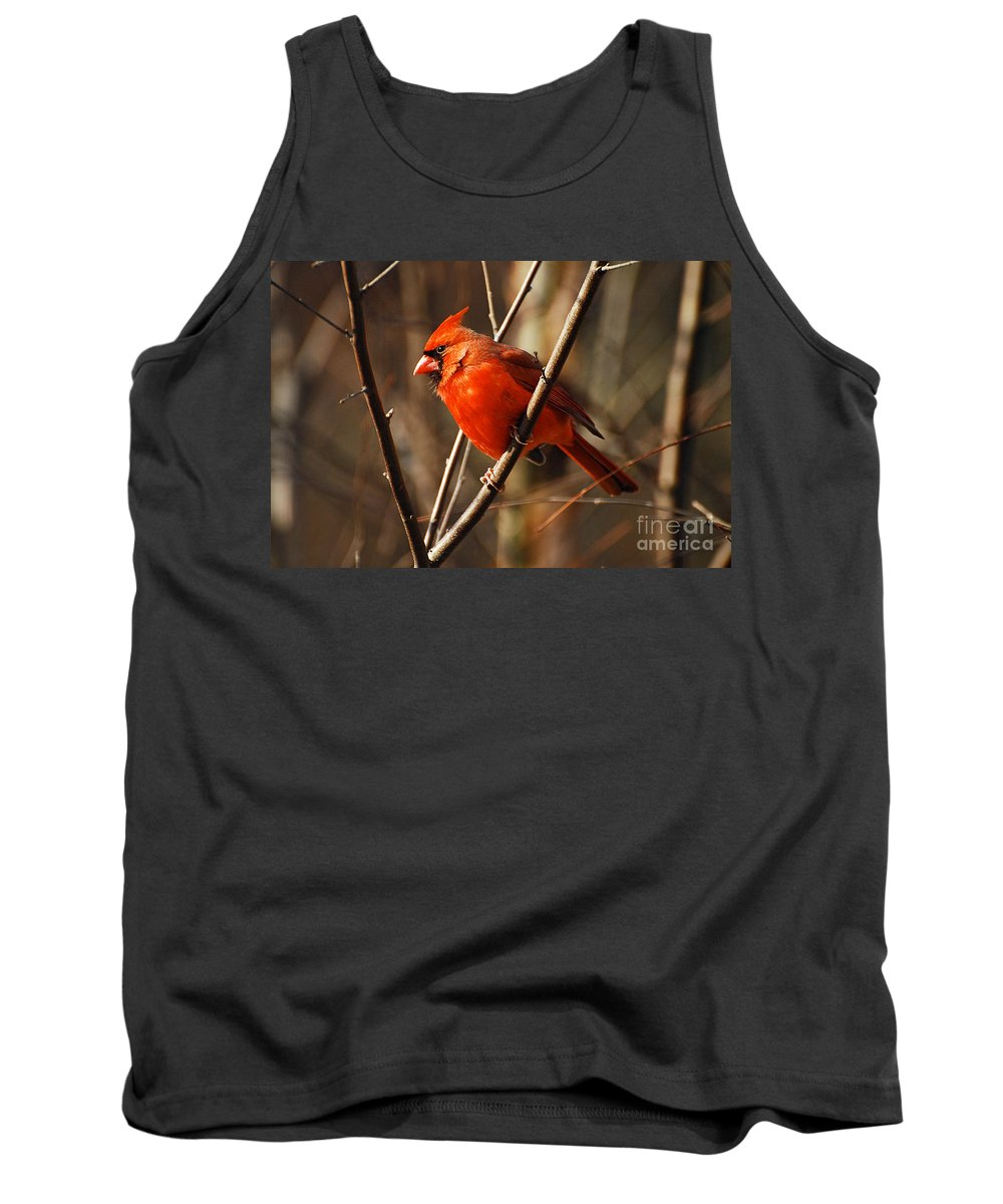 Wildlife Tank Top featuring the photograph Crimson King by Lois Bryan