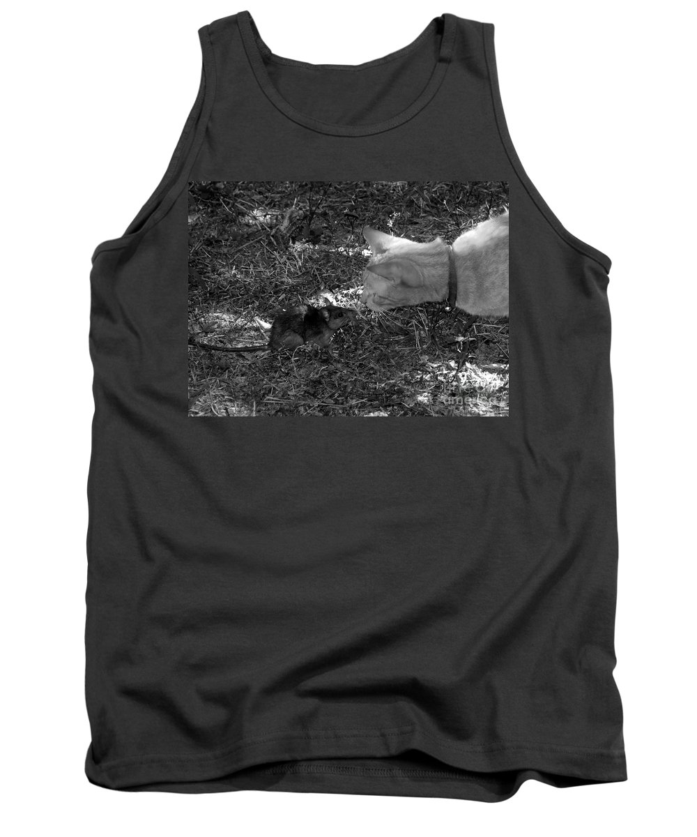 T Tank Top featuring the photograph Curious by David Lee Thompson