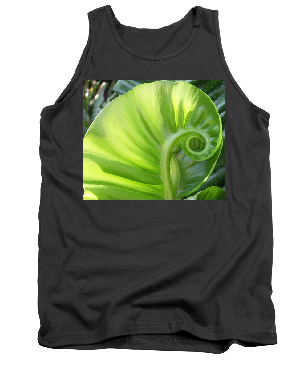 Leaf Tank Top featuring the photograph Curly Leaf by Amy Fose