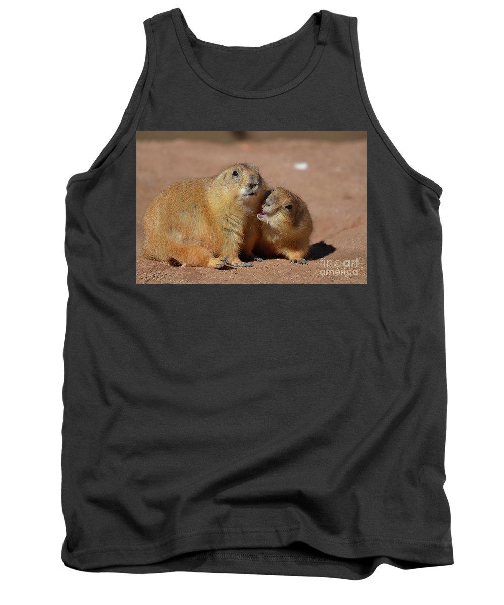 Prairie-dog Tank Top featuring the photograph Cute Prairie Dog Nipping At His Friend by DejaVu Designs